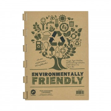 Ecobee Environmental Friendly